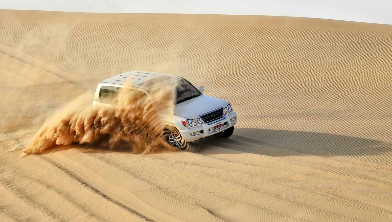 Full Day Combo Abu Dhabi City Tour Desert Safari